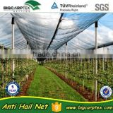 New Arrival for 2015, 50grm 100% Virgin HDPE agricultue anti hail net (20 years factory)