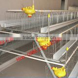 Agricultural equipment folding design layer chicken cages bird laying hens (lydia : 0086-15965977837)