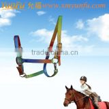 top quality coloful horse bridle