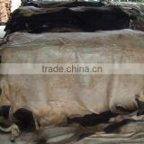 DRY SALTED DONKEY HIDES / WET SALTED DONKEY HIDES