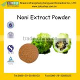 GMP Certified Factory Supply Natural Noni Extract Powder
