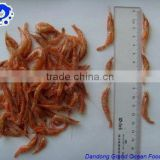 dry red shrimp