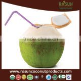 Young Coconut Water Concentrate 1000 ml - COMPETITIVE PRICE - Rosun Natural Products Pvt Ltd INDIA