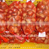 chestnut, fresh chinese chestnut, china chestnut for sale, dandong chestnut, laiwu wanxin