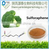 Suooly sulforaphen /Broccoli seed Extract powder