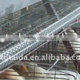 High quality design layer chicken cages for Kenya poultry farm ( full poultry equipment)