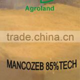 China fungicide Mancozeb 85%TC