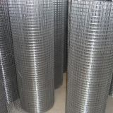 Hot Dipped Galvanized Welded Mesh