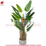 Artificial decorative banana tree ficus tree branch live bonsai tree for home and office decoration