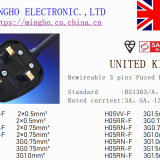 UK、SASO、PSB Rewirecable Fused Plug