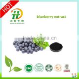 100% blueberry powder Natural Bilberry Extract Anthocyanidins 5%, 10%, 15%, 20%, 25% UV Anthocyanins 25%, 36% HPLC