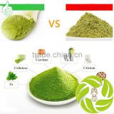 Hot selling organic Japanese tea weight loss tea anti-aging organic matcha green tea powder