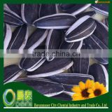 Wholesale Common Dried Raw Sunflower Seeds