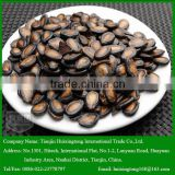 High Quality Black Watermelon Seeds for Your Choice