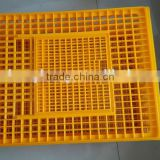 Good quality plastic cage for quail best price poultry transport cage (whatsapp:0086.13791327428)