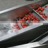 Stainless steel apple washing production line potato banana blanching machine from China factory