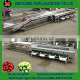 Fruit grading machine for apple/kiwi/lemon/mandarin/mango/orange/peach/pear/plum/tomato/potato