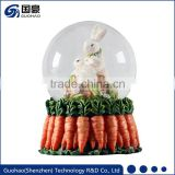 Easter carrot snowglobes Collection photo snow globes