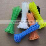 Self-Locking Nylon Cable Tie(factory)
