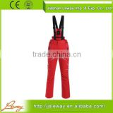 Wholesale goods from china men's ski pants