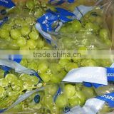 High Quality Fresh Seedless Green Grapes