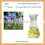 100% Pure borage extract borage oil borage oil borage seed oil
