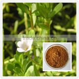 Top Quality 100% Natural Brown Powder Form portulaca oleracea extract