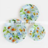 3pcs Glass Plate Set with Decal, Round Glass Dish, G321062