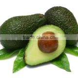 organic pure and organic cold pressed avocado seed oil for sell extraction bulk