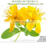 St. john's wort extract powder Hypericins 0.3% UV,Hyperforin 3% UV
