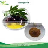 Halal/ HACCP/Organic Beauty & personal care product olive leaf extract Oleuropein 20%