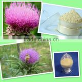 silymarin milk thistle extract powder/milk thistle extract silymarin silybin/milk thistle powder extract
