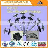 Competitive Price Roofing Nails With Umbrella Head For Construction                                                                         Quality Choice