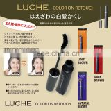 Japanese non-stiff hair dye mascara hair brush sets washable with shampoo