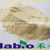 Sell High Quality Powder Lipase