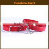 name brand dog collars and leashes