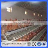 A and H type frame cage layer chicken cages for zimbabwe poultry farms(Guangzhou Factory)