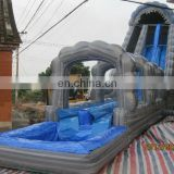 Giant inflatable pool slide WS062