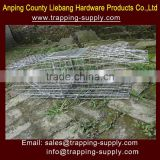 31*11*11inch Live Hunting Traps Humane Pigeon Trap Bird Traps Pest Control China Supplier