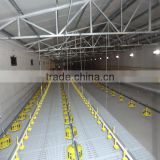 Farming poultry automatic feeding system for Poultry Farming equipment Auto. Feeding pan system