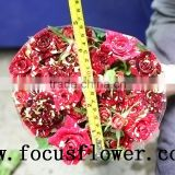long lasting rose plants directly wholesale fresh cut red rose flowers for valentine spray rose meteor shower for party