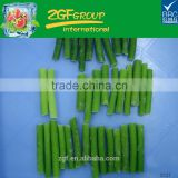 china frozen garlic sprout onion garlic herbs