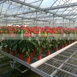 igh Quality Mesh Panels for Greenhouse Rolling Bench Greenhouse Potting Bench Greenhouse Seedbed