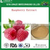 Alibaba china supplier raspberry ketone halal/red raspberry extract for bodybuilding supplement