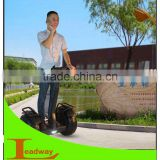 Leadway 2013 chinese strong climbing capacity three wheel motorcycle gas powered skateboard electric scooter with 1300w(W5L 02)