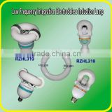 self-ballast induction light 15W-80W