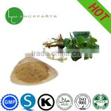 Made in china healthy product organic Heartleaf Houttuynia Herb P.E.