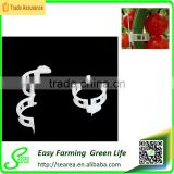 Plastic tomato clip for agriculture garden use