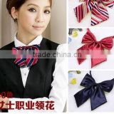 Airline stewardess Bank Hotel Ms. bow tie collar occupation dress waiter female student scarf