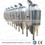 3hl low pressurized conical fermenter tank for beer brewing